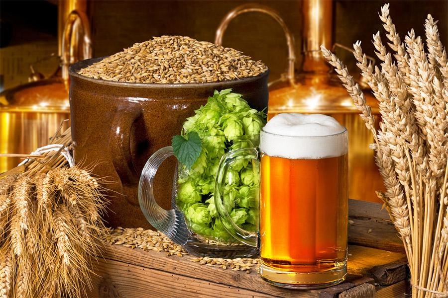 importância de filtros para o preparo da cerveja artesanal